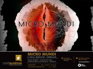 micro-mundi